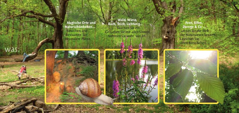 Magische Orte und Naturschönheiten... Wald, Wiese, Bach, Teich, Lichtung... Feen, Elfen, Zwerke & Co.